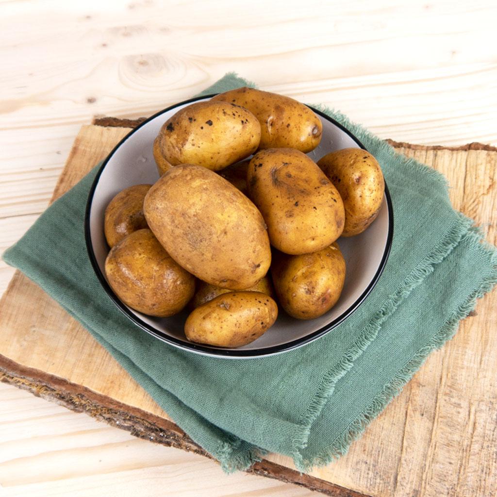 Kartoffeln festkochend 500g (Bio)